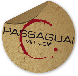 logo-passaguai